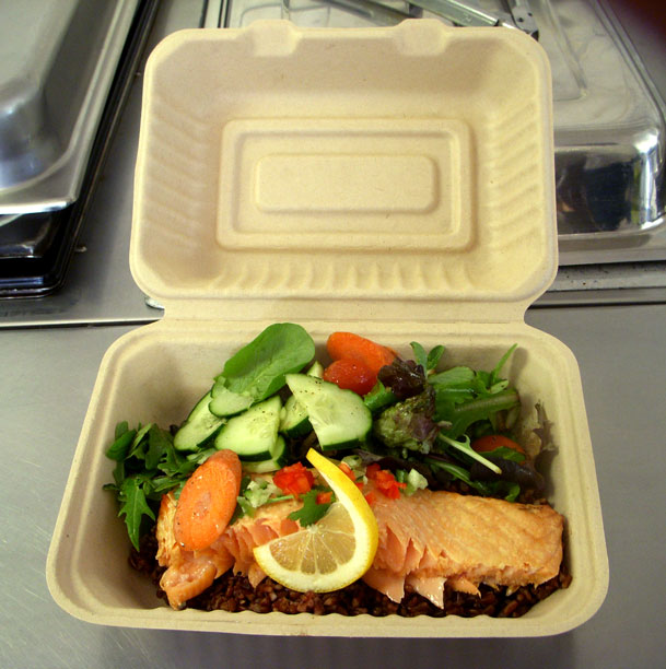 Salmon to go